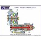 GM 4T65-E 18 X 24 Color Cutaway Poster