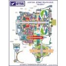 JF506E 18 X 24 Color Cutaway Poster